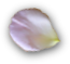 trenner-rosenblatt