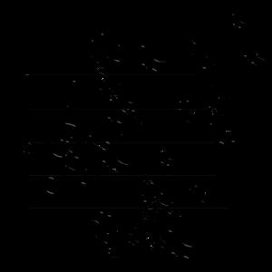 notenchaos